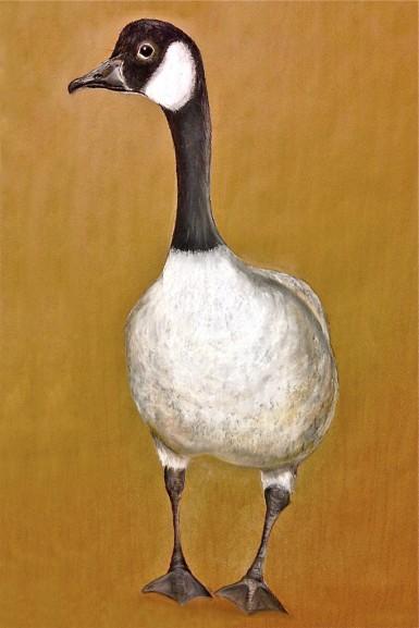 "Goose. Pastel. 22"" x 36"""