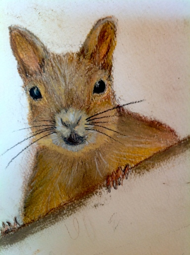 "Squirrel. Sketchbook. Pastel. 11"" x 14"""