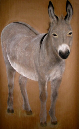 """Donkey. Pastel. 40"""" x 60"""""""