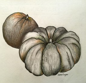 "Sketchbook. Pumpkins. Ink on Paper. 9"" x 9"""