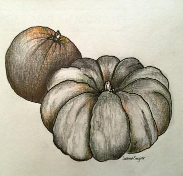 "Sketchbook. Pumpkins. Ink on Paper. 9"" x 9"""