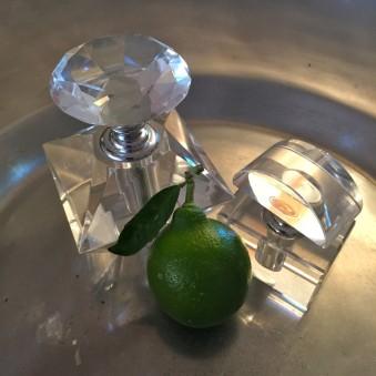 "Lime. Photograph. 12"" x 12"""