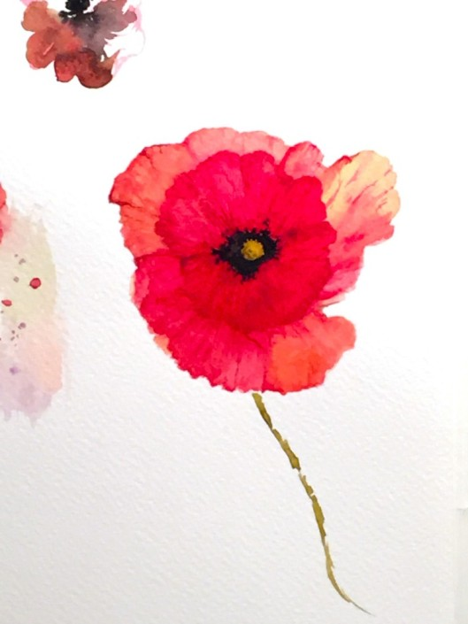 "Sketchbook. Poppy. Watercolour. 8"" x 10"""