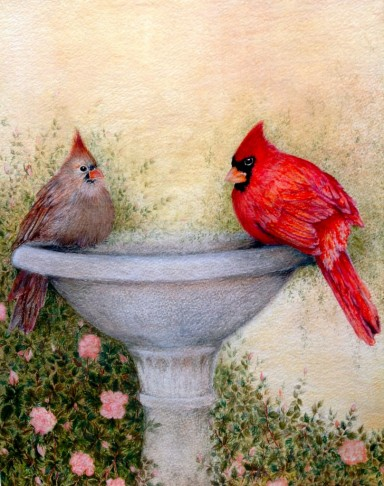 "Cardinals. Watercolour. 11"" x 14"""