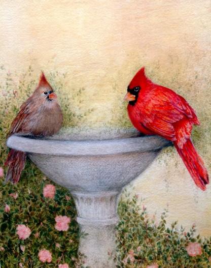 "Cardinals. Watercolour. 11"" x 14"""