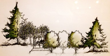 """Exercise in Trees. Landscape Textbook. Ink on Paper. 6"""" x 14"""""""